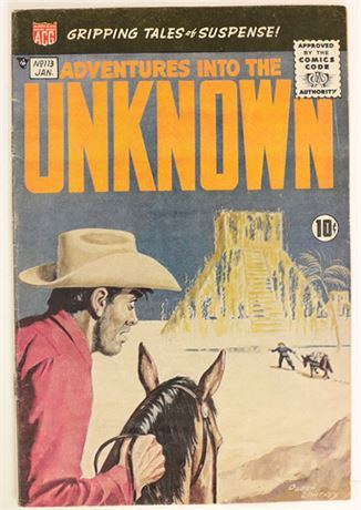 Adventures Into The Unknown #113 VG 1960