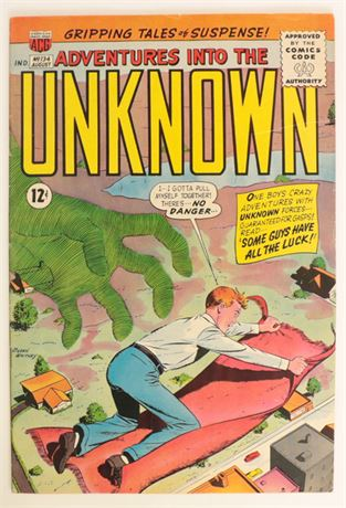 Adventures Into The Unknown #134 FN- 1962